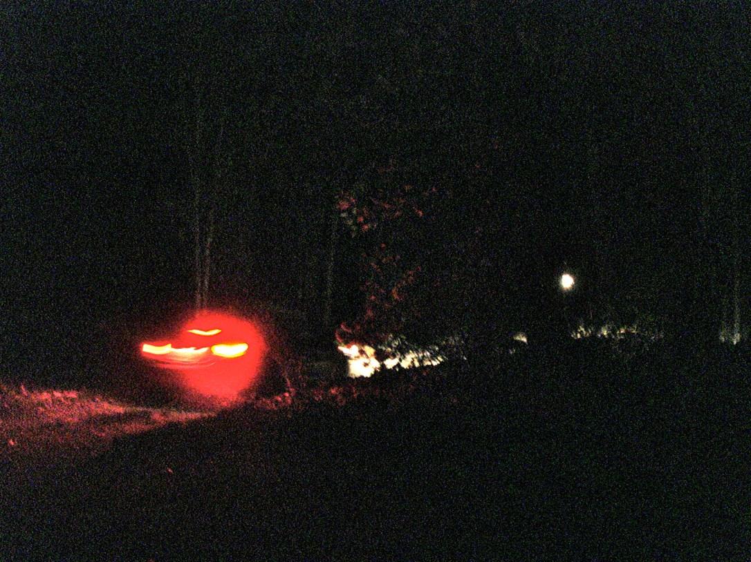 DSC05061