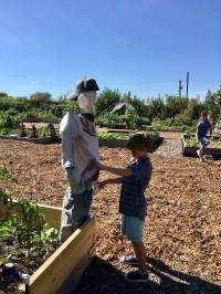 Beck found a scarecrow