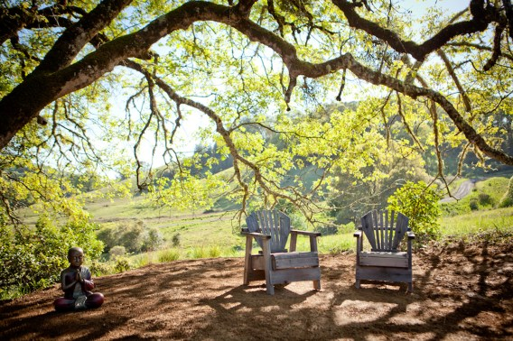 sitting area Bell Valley
