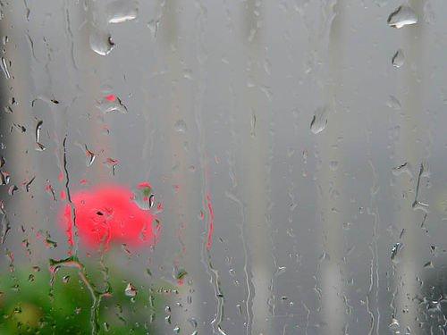 Let It Rain by Tomcat mtl