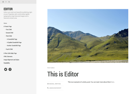 Editor WordPress theme