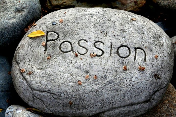 advice to pursue your passion