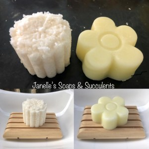 Shampoo & Conditioner Bars & Sugar Scrub Soaps