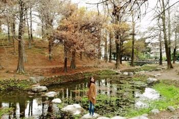 【宜蘭】羅東運動公園,落羽松美景、餵魚、騎車、大草原一網打盡,親子遊景點推薦