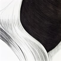 Shell Series, #7, charcoal, 24 x 24 inches, SOLD