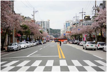 Jinhae, South Korea