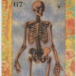 A Cabinet Of Curiosities Limited Edition Steve Tarot Card