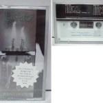 Nothing's Shocking Korean Cassette