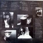 Nothing's Shocking Vinyl Insert Back