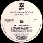 Fallen Angel Vinyl Promo Side 1