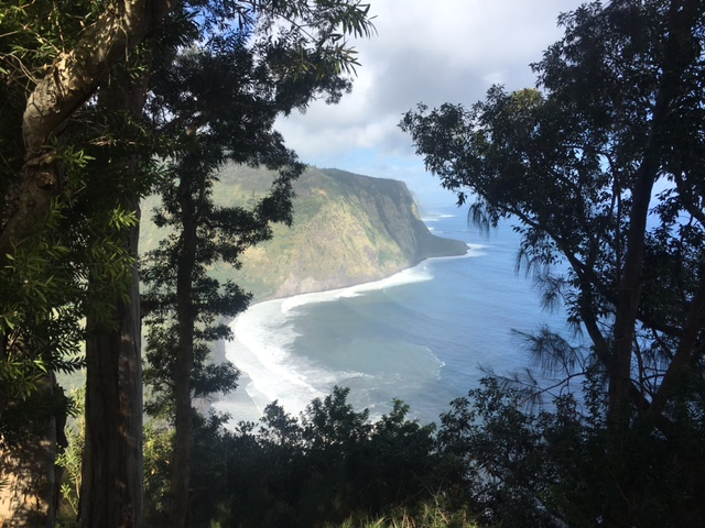 Waipi'o Valley Lookout