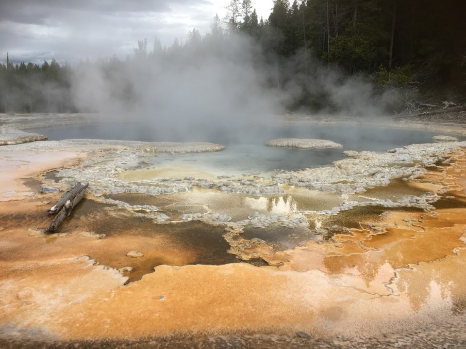 Choosing Geysers at Yellowstone National Park