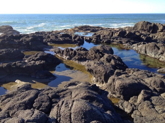 Yachats Oregon tide pools