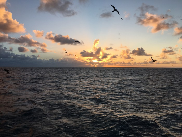 Reefsleep Australia Great Barrier Reef vacation travel sunset