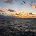 Sunset on the Great Barrier Reef