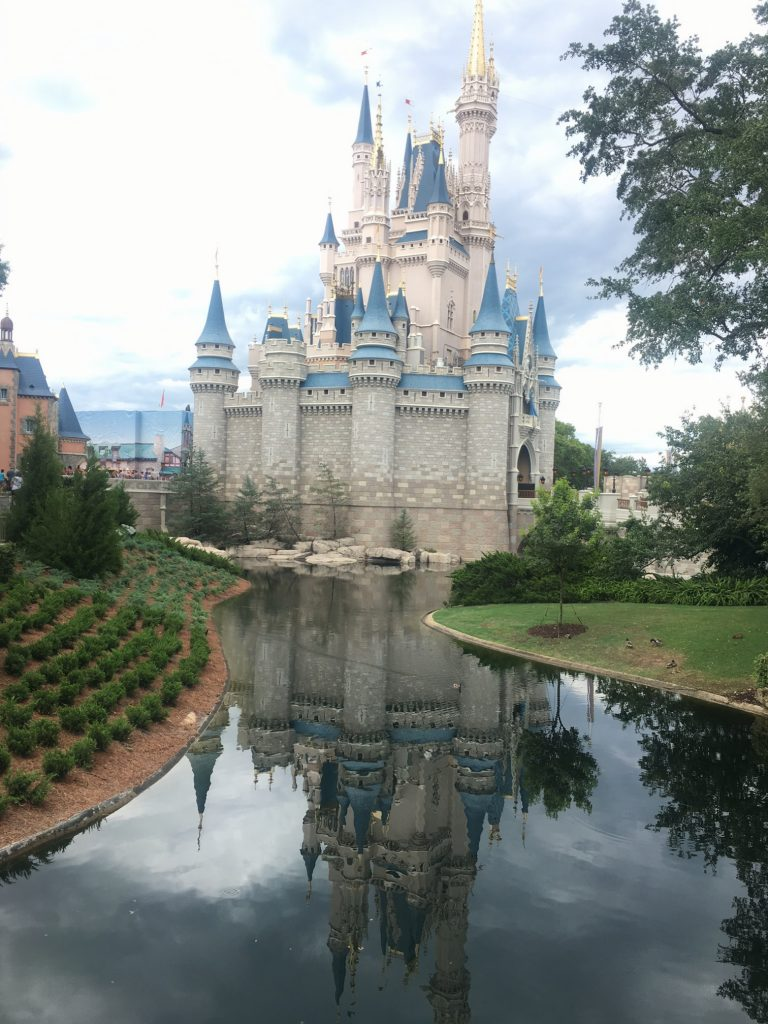 Castle at the Magic Kingdom, Disney world, advice for adults