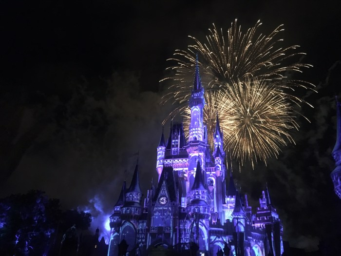 Fireworks castle Disney World adult trip no kids