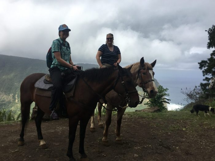 Riding horses on the Big Island