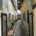Charleston, South Carolina alleyway