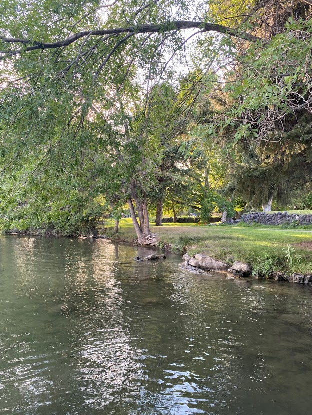 Green riverbank at Walcott State Park