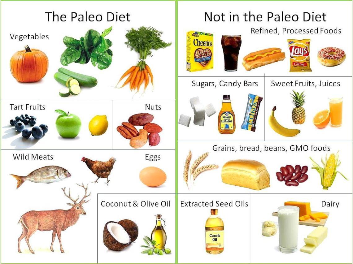 What's the Paleo Diet? – Jane's Healthy Kitchen