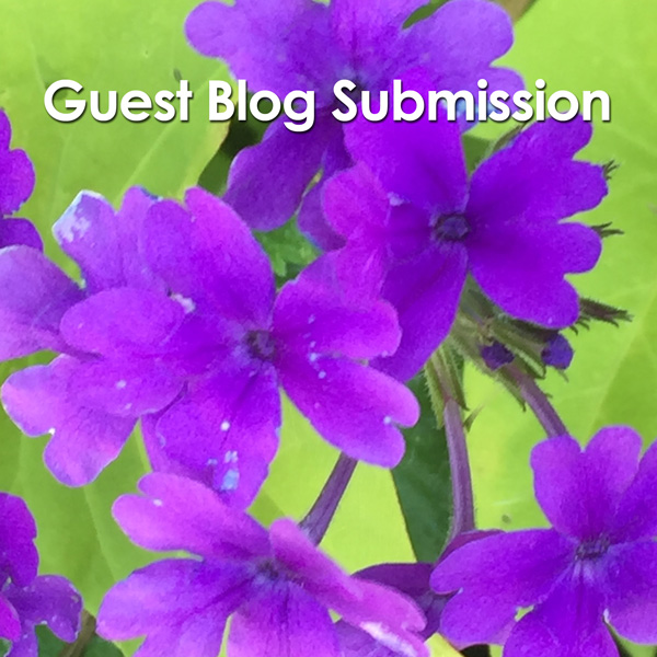 Guest Blog Post Submission Form