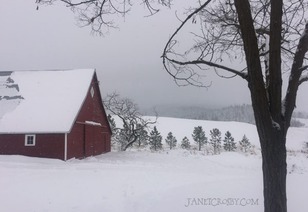 Snow Barn 2015