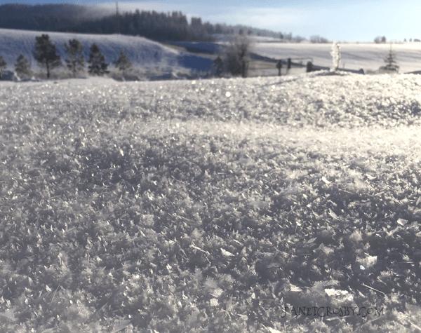 Hoar Frost Landscape
