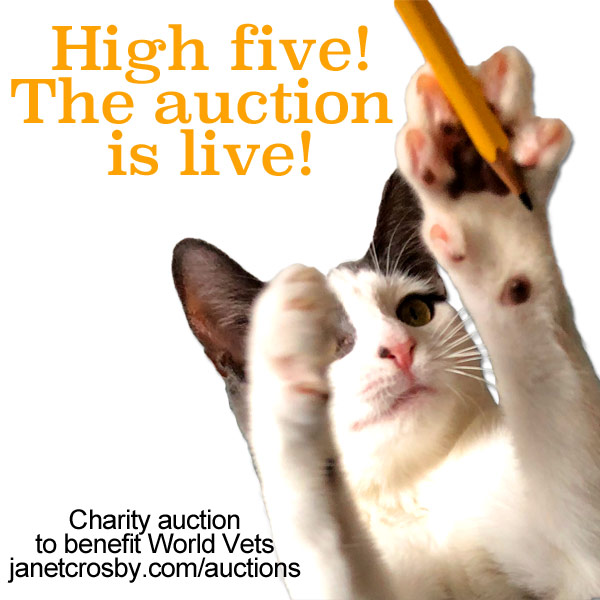 Pippa High Five Auction is Live