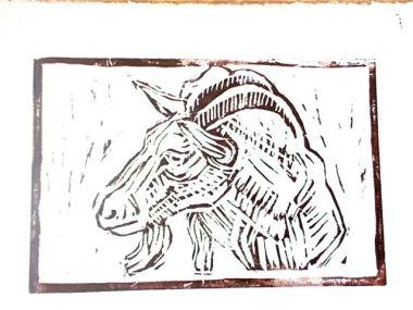 White goat 1a print 1 by Janet E Davis.