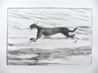 Black dog running 3