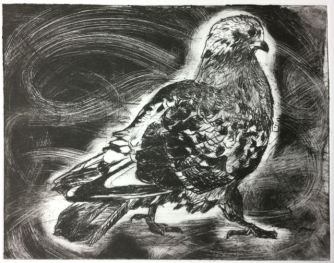The Byker pigeon version 3, drypoint.