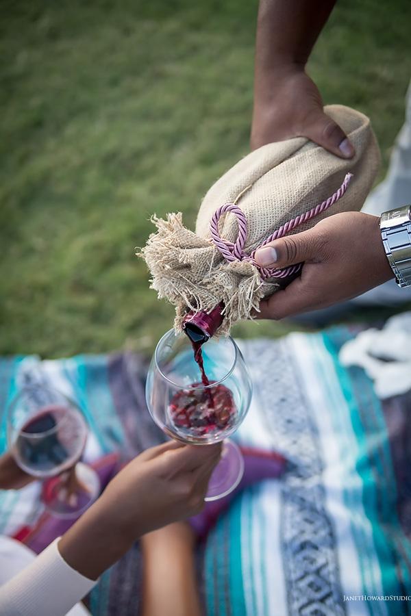 Piedmont Park picnic engagement session