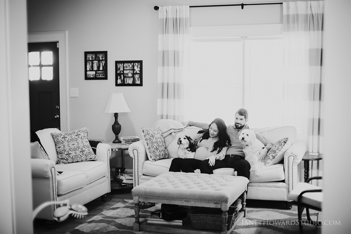 maternity session with dogs