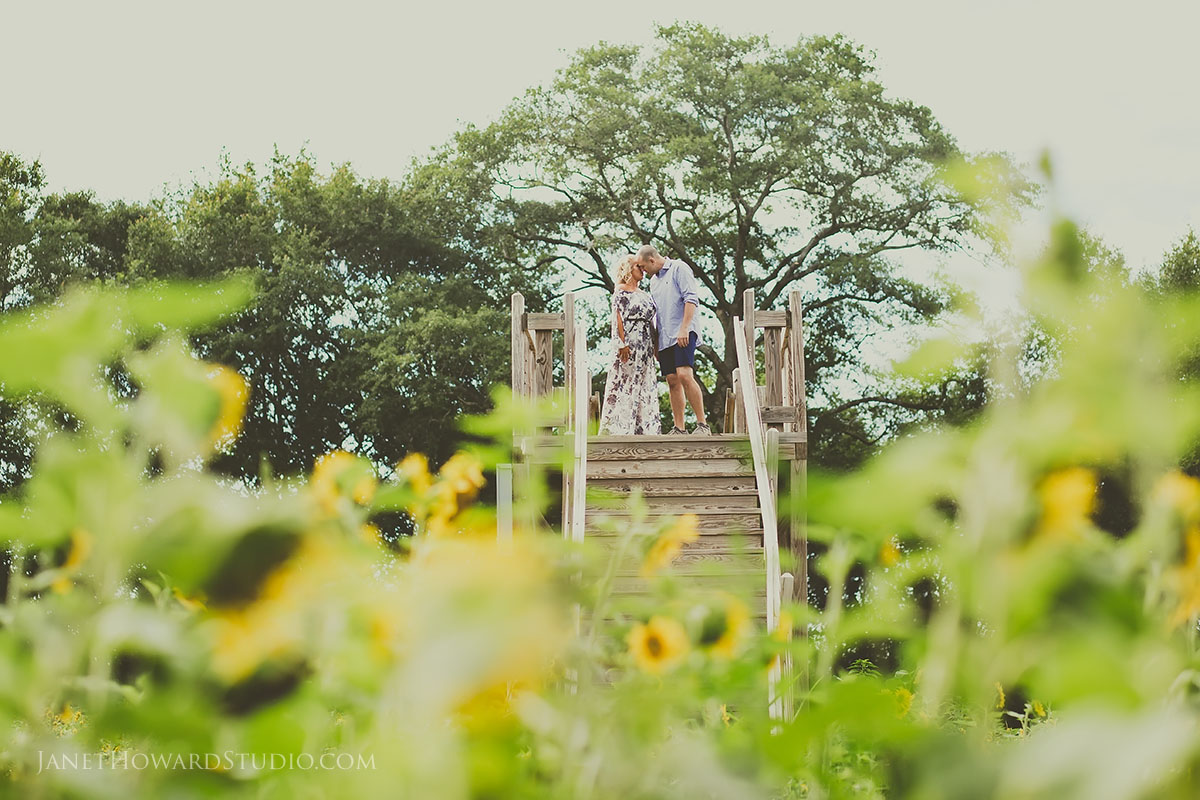 Engagement photos at Copper Creek Farm
