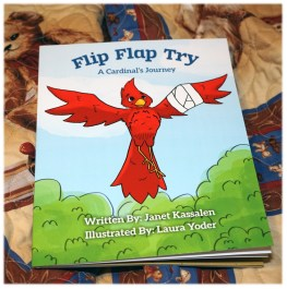 Soft Cover Flip Flap Try