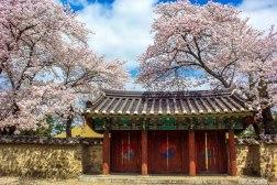 Gyeongju Temple