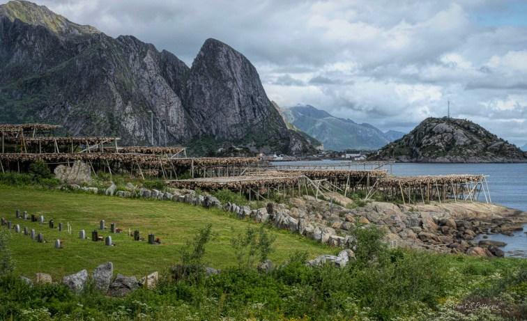 seascape, landscape, cod, mountains, Reine, Norway,