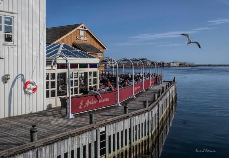 seascape, landscape, Svolvaer, wharf, restaurant, gull, bird, ocean, Norway