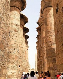 Forest Pillar in Karnak Temples