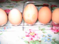 Sometimes we do get HUGE eggs.