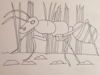 Adam's Animals: Ant
