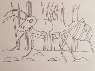 Adam's Animals: Ant