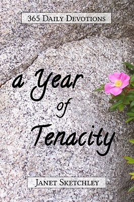 A Year of Tenacity