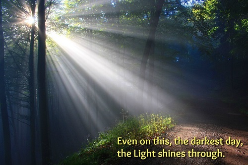 "Light streaming through trees. ""Even on this, the darkest day, the Light shines through."""