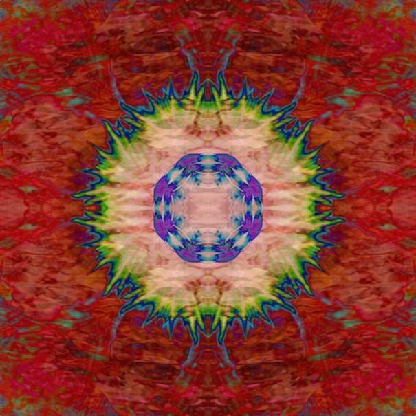 Pansy Pool Mandala by Janet Towbin