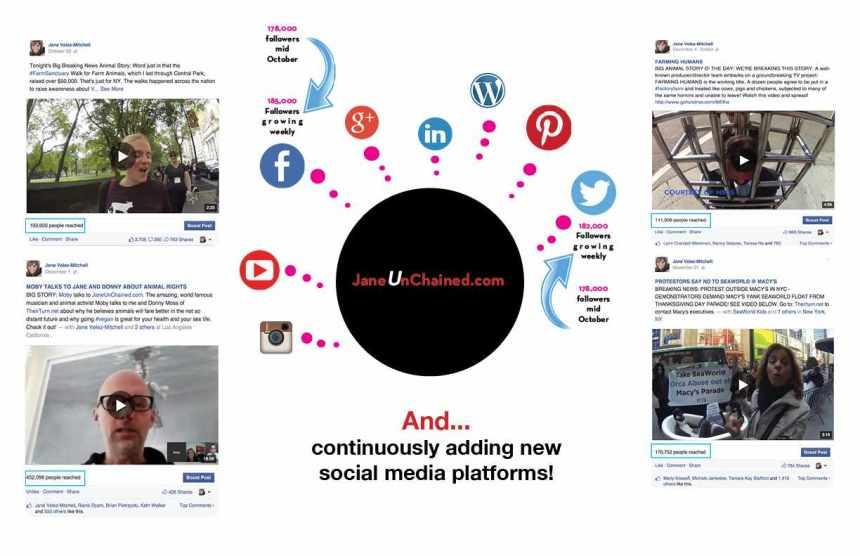 JVM social media2