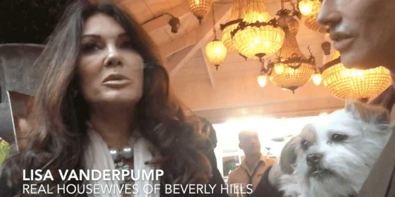 Real Housewives of Beverly Hills Star Lisa Vanderpump Did What?