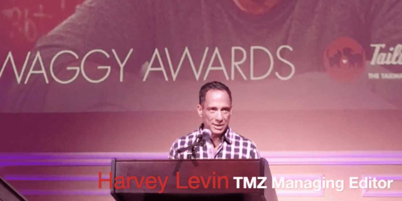 TMZ's Harvey Levin Applauds JaneUnChained!