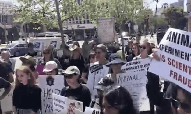 Huge Protest against UCLA Animal Labs